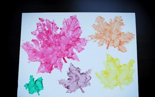 картинки осенних листьев