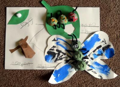 Поделка для старшей группы - Как появляются бабочки (7)