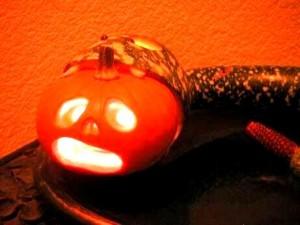 Змея своими руками - поделка на Хеллоуин (5)