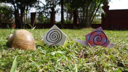 Улитка из бумаги - схема как делать оригами (1)