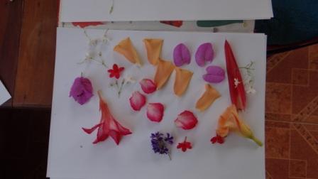 Декупаж свечей сухоцветами - МК (1)