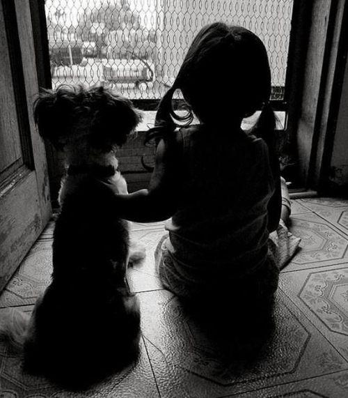 Домашнее животное для ребенка (2)