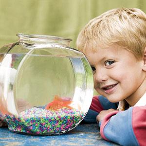 Домашнее животное для ребенка (4)