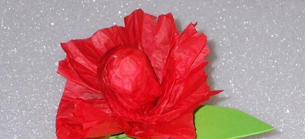 Цветы из папиросной бумаги (1)