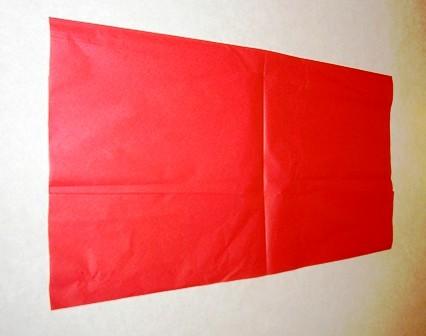 Цветы из папиросной бумаги (3)
