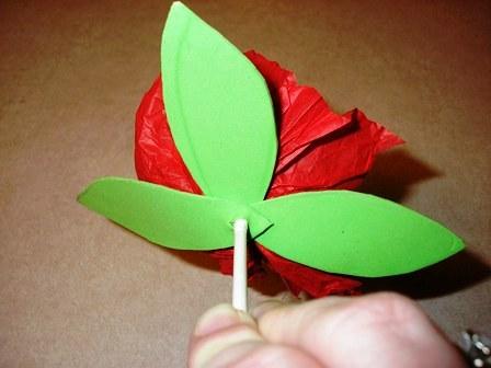 Цветы из папиросной бумаги  (9)