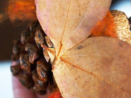 Осенние поделки из шишек (7)